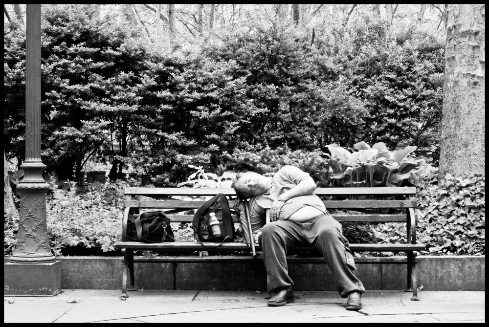Bryant Park denizen.jpg