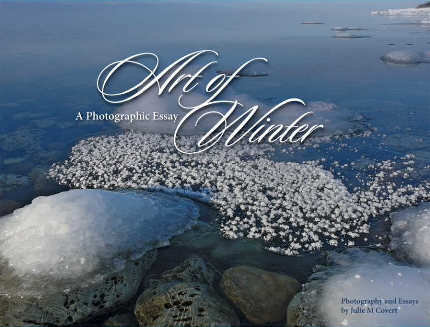 Art-of-Winter-Cvr_03.20.12.jpg