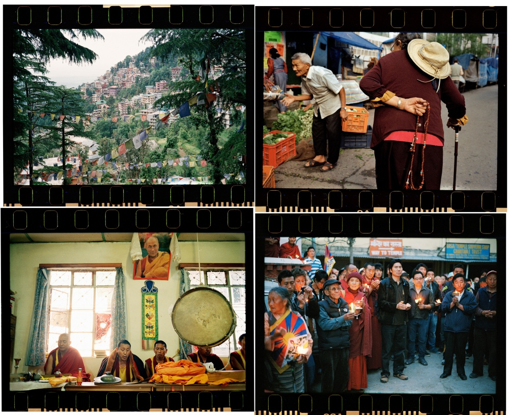 new dharamshala collageSMALL.jpg